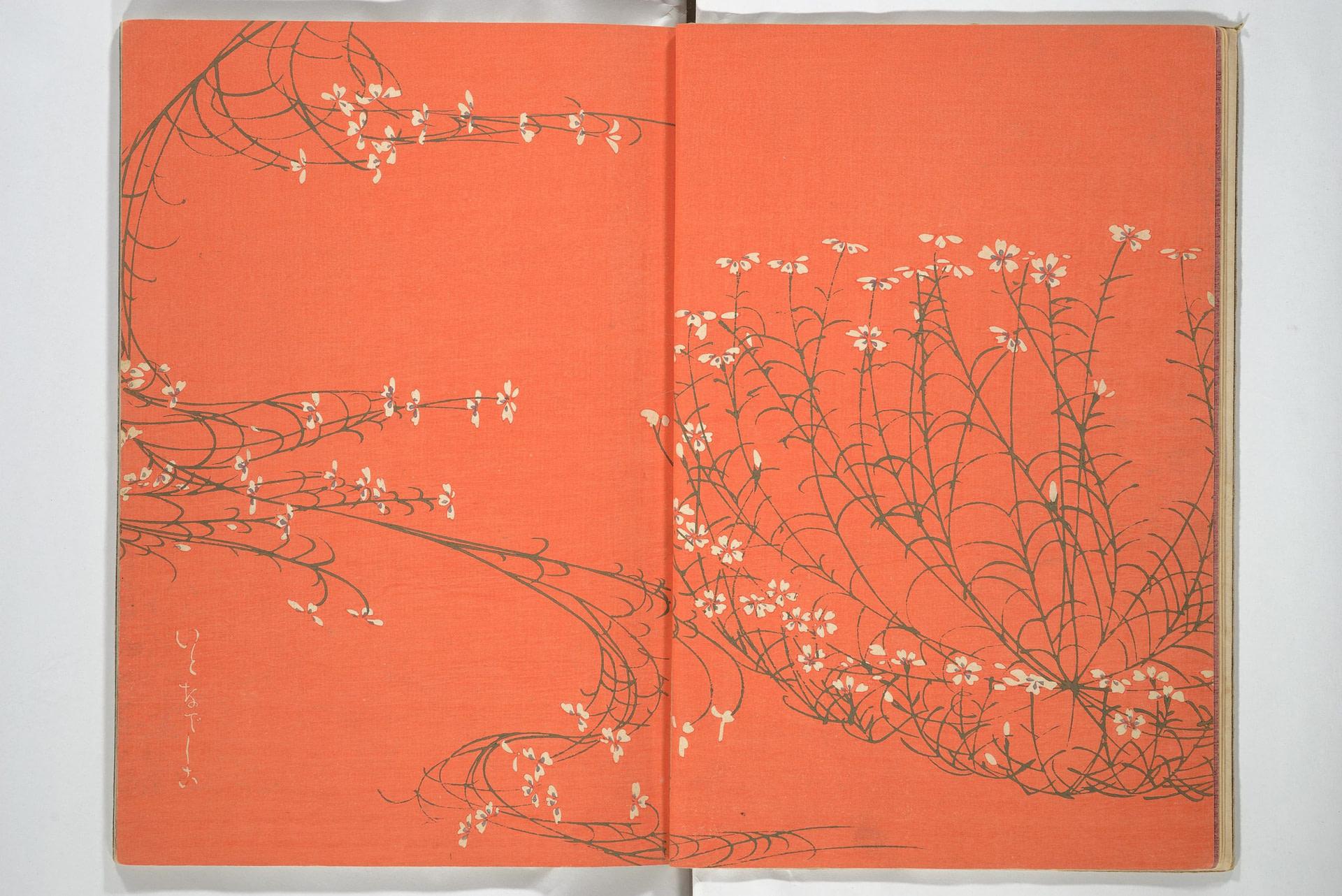 marenostrumgraficas oyo sketchbook